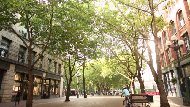 the pioneer square area of downtown seattle on a sunny day. - seattle stock videos & royalty-free footage
