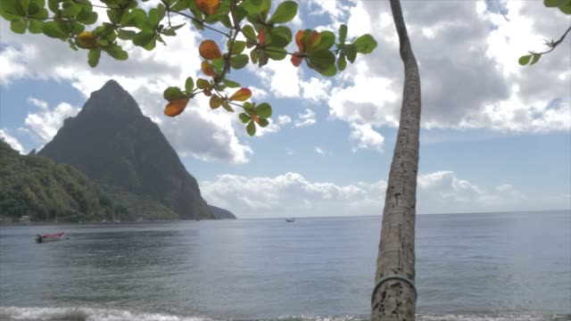 the pitons from soufriere beach, unesco world heritage site, st. lucia, windward islands, west indies caribbean, central america - st. lucia stock videos & royalty-free footage