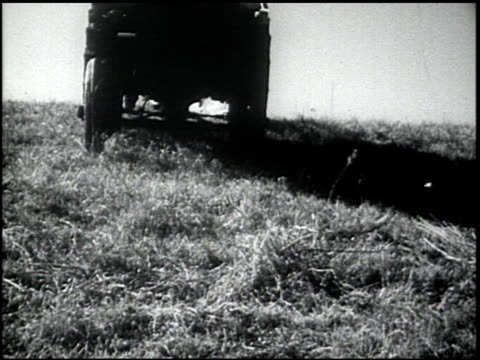 the plow that broke the plains - 11 of 24 - see other clips from this shoot 2466 stock videos & royalty-free footage