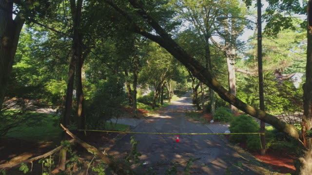 the police barricade tape marks the road which is closed because of a dangerous wind in a suburb. a fallen tree barricaded the street in a small town in new jersey after a storm.  aerial video with the low-altitude flight and backward camera motion. - road closed sign stock videos & royalty-free footage