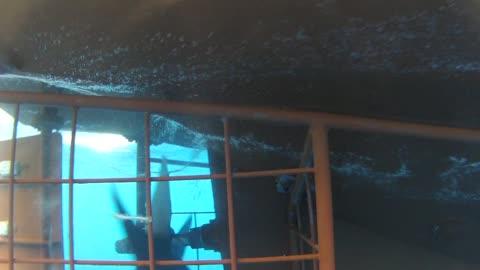 the propeller of a moving boat - propeller bildbanksvideor och videomaterial från bakom kulisserna