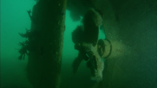 The propeller remains intact on the sunken remains of the freighter 'Fang Ming'. Available in HD.