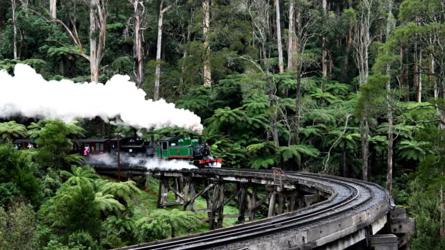 The Puffing Billy steam train pulls carriages of tourists along a track through the Danedong Ranges near Belgrave Victoria in Australia