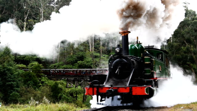the puffing billy steam train pulls carriages of tourists along a track through the danedong ranges near belgrave victoria in australia - steam train stock videos & royalty-free footage