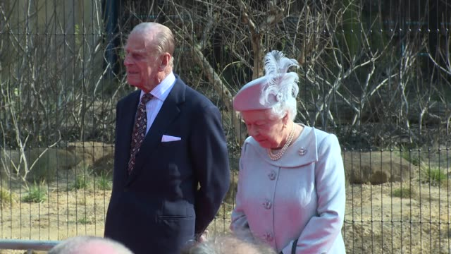 hm the queen and the duke of edinburgh at zsl london zoo on march 17 2016 in london england - prince philip stock videos & royalty-free footage