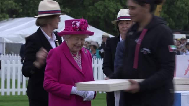 the queen joined the chancellor philip hammond felicity jones chris eubank and gillian anderson for the outsourcing inc royal windsor cup at the... - gillian anderson stock videos & royalty-free footage