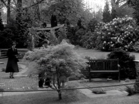 the queen mother and princess margaret are shown around one of the exhibition gardens at the chelsea flower show 1953 - chelsea flower show stock-videos und b-roll-filmmaterial