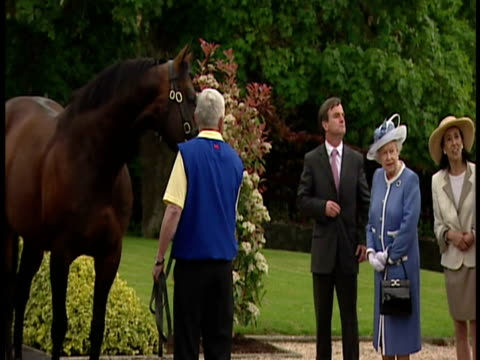 the queen's been to see champion racehorses at the irish national stud as part of her historic state visit to ireland. it's been a more personal... - racehorse stock videos & royalty-free footage
