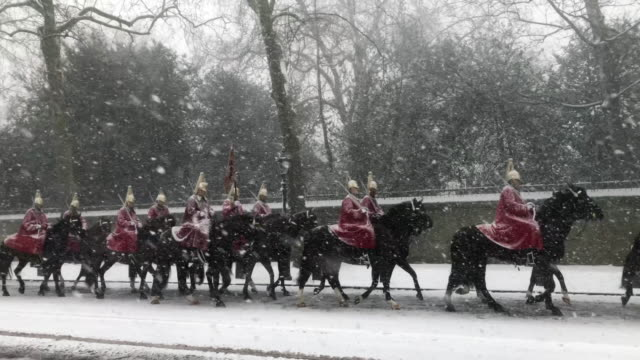 the queen's guard in snowstorm - horse family stock videos & royalty-free footage
