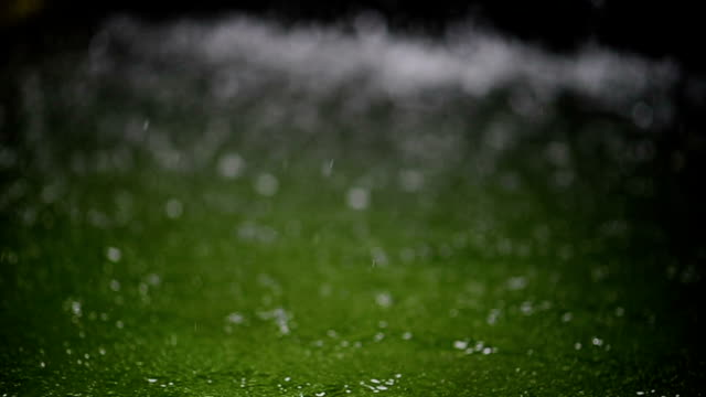 the rain in the rain, the rain is flowing into a beautiful bokeh. - protezione video stock e b–roll
