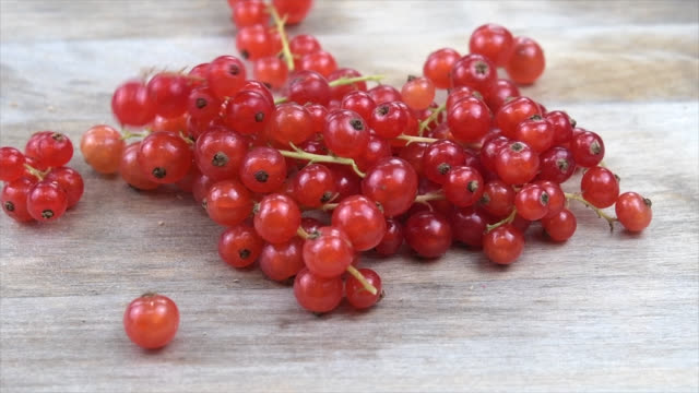 the redcurrant, or red currant (ribes rubrum) over a wooden surface - currant stock videos & royalty-free footage