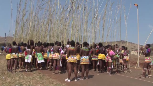 The Reed Dance ceremony in KwaZulu Natal province in South Africa celebrates virginity