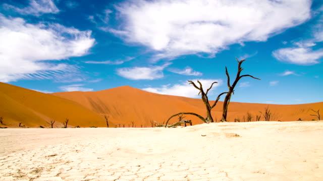 vídeos de stock, filmes e b-roll de ds ws as ruínas de uma dry lake - clima árido