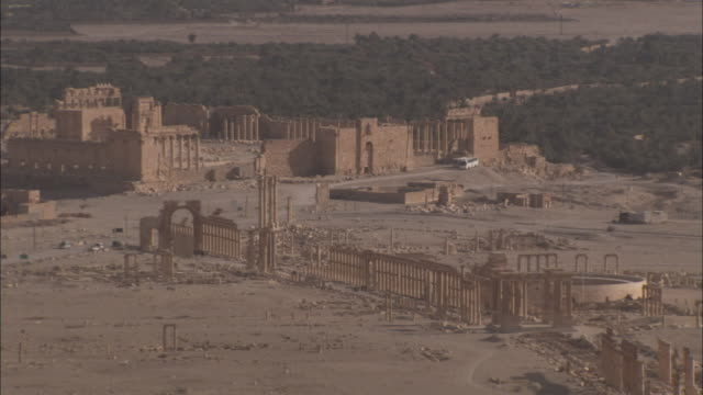 The remains of stone columns line the grand colonnade in the ancient city of Palmyra. Available in HD