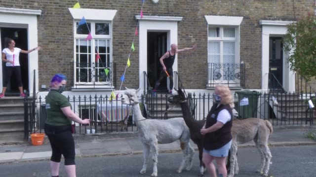 the residents of a small south london square come out in their spandex and kooky costumes for a 12hour 'doorstepathon' led by selfproclaimed fitness... - spandex stock videos & royalty-free footage