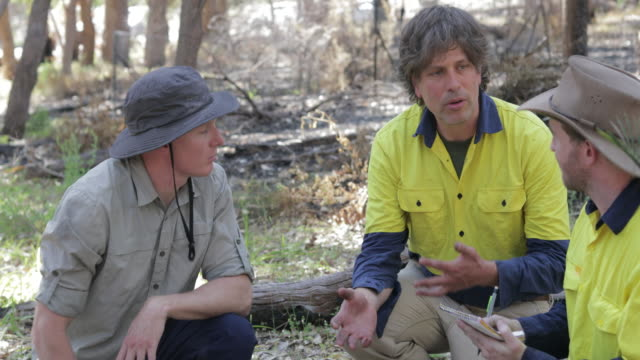 the result of the bush fires - land stock videos & royalty-free footage