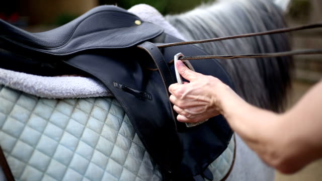 the rider prepares saddle after riding - saddle stock videos & royalty-free footage
