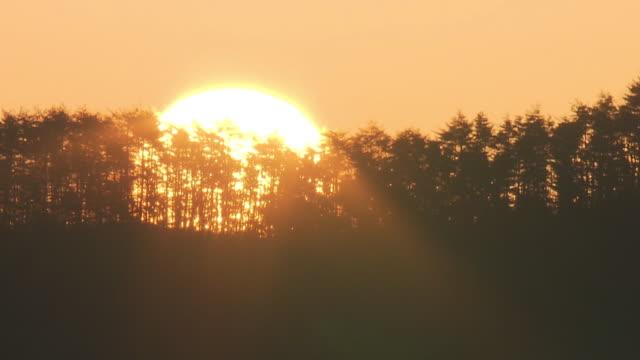 the rising sun, miyagi, japan - japan stock videos and b-roll footage