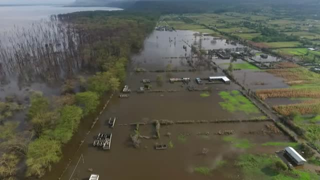 the rising water levels in the lakes inhabiting the great rift valley in kenya have not only caused large-scale displacements but have also increased... - 14 15 years stock videos & royalty-free footage