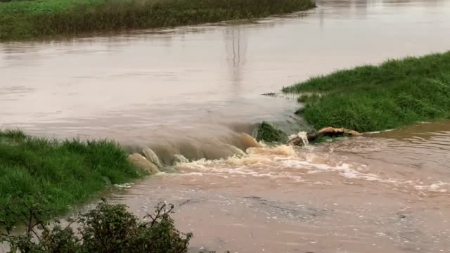 the river clyst has burst its banks and has flooded clyst st mary in exeter. it comes as the environment agency published several flood warnings in... - devon stock videos & royalty-free footage