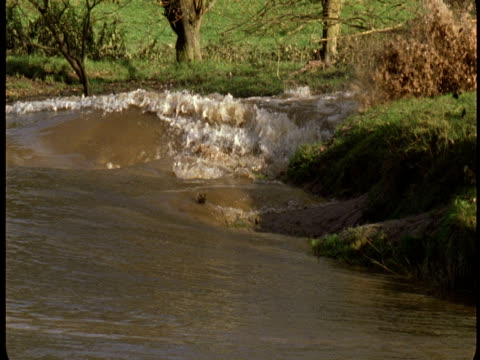 the river severn crashes over its lush banks. - riverbank stock videos & royalty-free footage