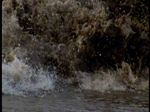 the river severn swells during a tidal bore. - riverbank stock videos & royalty-free footage