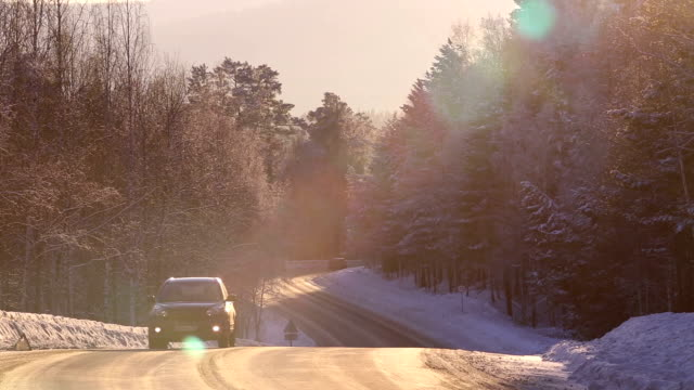 The road in the winter forest.