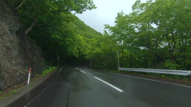 på vägen genom skogen i regn - plusphoto bildbanksvideor och videomaterial från bakom kulisserna