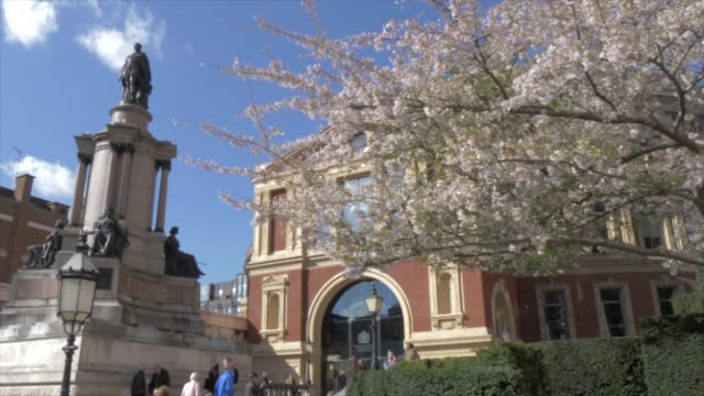 the royal albert hall in springtime, kensington, london, england, united kingdom, europe - royal albert hall stock videos & royalty-free footage
