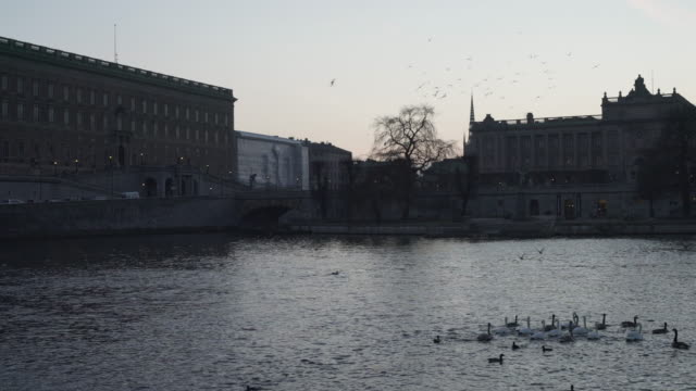 the royal castle and the swedish parliament - sweden stock-videos und b-roll-filmmaterial