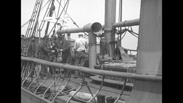 """vidéos et rushes de the rum-running ship """"federalship"""" with two submarine chasers; a flag is raised and the panamanian flag flies on deck; the ship and the chasers /... - prohibition"""