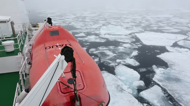 The Russian research vessel, AkademiK Sergey Vavilov an ice strengthened ship on an expedition cruise to Northern Svalbard, with clients on the prow at over 80 degrees north in rotten sea ice, some 550 miles from the North Pole.