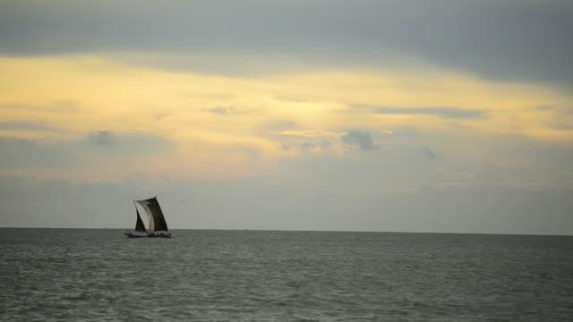 das segelboot ist am horizont in negombo, sri lanka cruisen. - herumfahren stock-videos und b-roll-filmmaterial