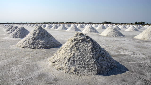the salt farms industry, salt making in a large area - salt shaker stock videos and b-roll footage