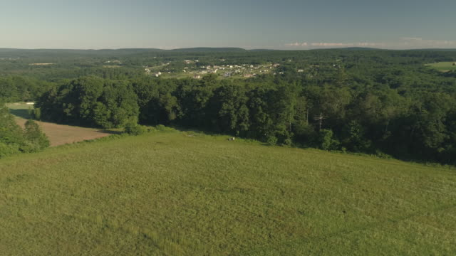 The scenery aerial view of Poconos, Monroe County, Pennsylvania. The sunny summer morning. The panoramic view to the Kunkletown over the fields and forest.