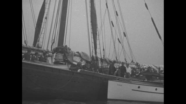 the schooner effie m morrissey coming into port / david putnam son of the expedition chief george p putnam wears a fur parka and displays a skull... - effie stock videos and b-roll footage