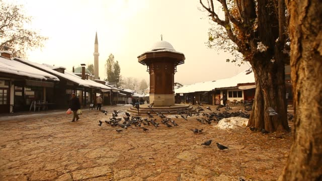 The Sebilj fountain in Sarajevo with pigeons