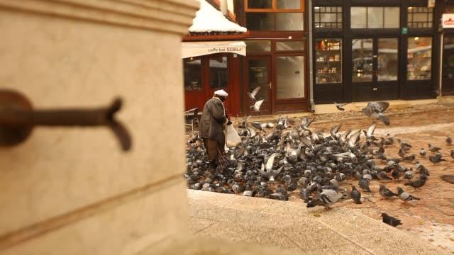the sebilj fountain in sarajevo with pigeons - bosnia and hercegovina stock videos & royalty-free footage