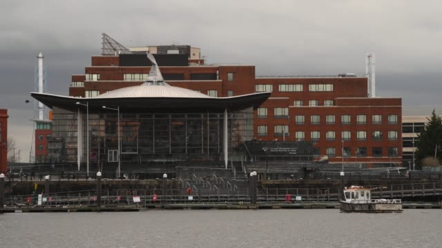 the senedd, home of the welsh national assembly, at cardiff bay, wales, uk. - typisch walisisch stock-videos und b-roll-filmmaterial