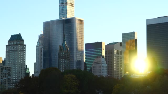 the setting sun reflects among the midtown manhattan skyscraper behind the trees in sheep meadow central park at new york ny usa on nov. 08 2018. - sheep meadow central park stock videos and b-roll footage