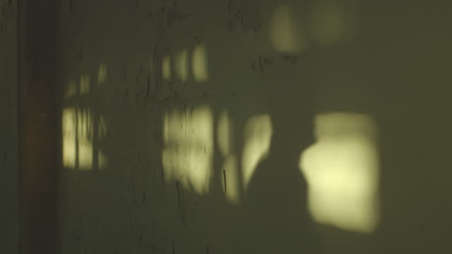 The shadow of a man crosses mottled patches of light on a wall covered with severely flaking paint.