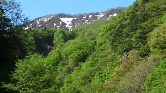 the shirakami mountains in the spring - satoyama scenery stock videos and b-roll footage