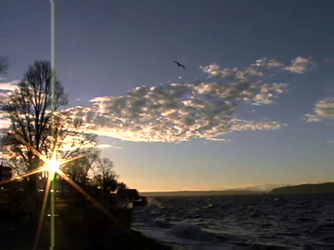 the shore of puget sound at sunset - puget sound stock videos & royalty-free footage