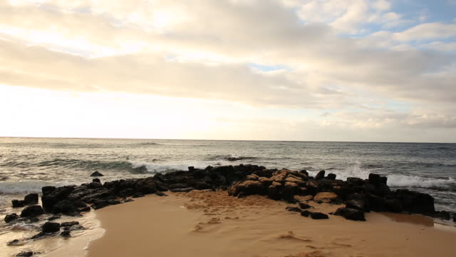 the shoreline of kauai at sunset on the island of kauai. - vattenlandskap bildbanksvideor och videomaterial från bakom kulisserna