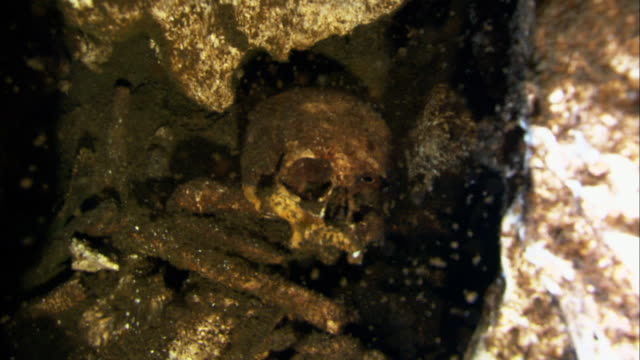the skull and bones of an ancient lucayan is seen in an underwater cave. available in hd. - dead person stock videos & royalty-free footage