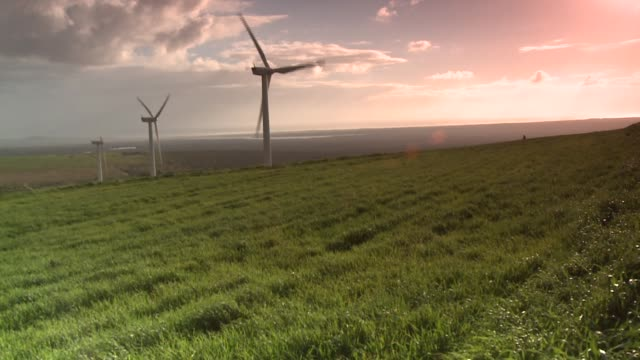 The sky glows pink behind turning wind turbines. Available in HD.