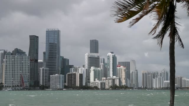 the skyline is seen as the democratic national committee announced today that it has selected the city of miami to host the party's first... - msnbc stock videos & royalty-free footage