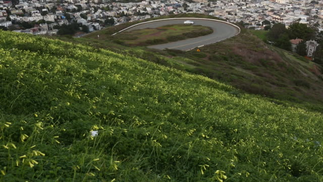 the skyline of san francisco and the surrounding bay area. - oakland california stock videos & royalty-free footage
