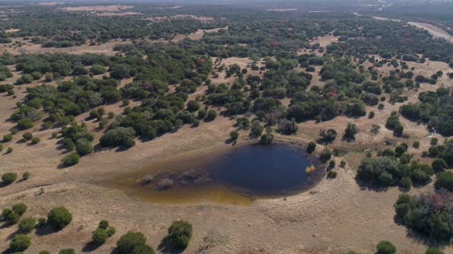 the small artificial round pond in the juniper forest in the arid highland in texas, usa. aerial drone video with the slow descending camera motion. - arid stock videos & royalty-free footage