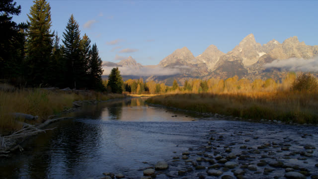 the snake river flows past wooded banks in grand teton national park. - snake river stock videos and b-roll footage